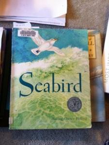Holling's Seabird